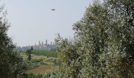 Prove di impollinazione assistita: ecco il drone in azione!